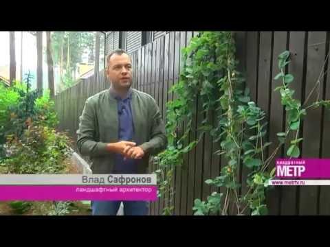 «Экодизайн»: трудности создания ландшафтного дизайна для дома с обустроенным участком