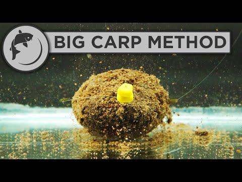 Guide til fiskeri efter karper med method feeder