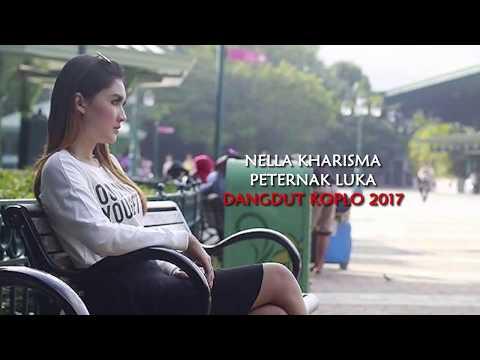 , title : 'Nella Kharisma - Peternak Luka (Dangdut Koplo 2017)'