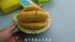 在榴哥吃最贵猫山王黑金 连最便宜的红虾也包吃  Must try Black Gold King of King Musang King