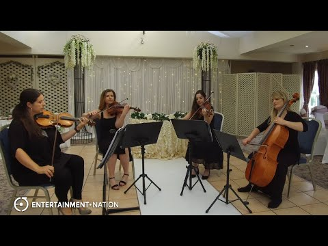 Sky String Quartet - Classical String Quartet
