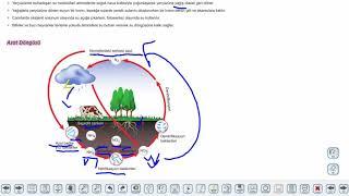 Eğitim Vadisi 10.Sınıf Biyoloji 17.Föy Madde Döngüleri Konu Anlatım Videoları