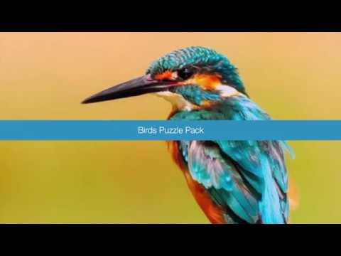 Birds puzzle pack