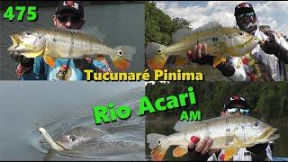 Tudo sobre nossa viagem ao Rio Acari no Amazonas - Fishingtur na TV 475