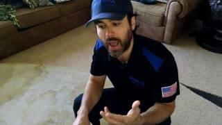 Horrific Pet Odor Removal - Dog & Cat Urine