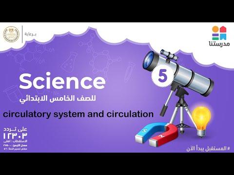 circulatory system and circulation | الصف الخامس الابتدائي | Science