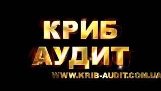"""Аудиторская Компания """"Криб-Аудит"""""""