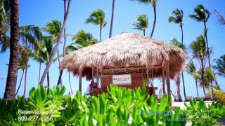 Occidental Punta Cana Video - STSTravel