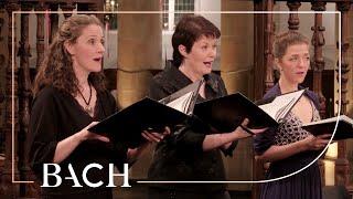 Bach – Cantata Herz und Mund und Tat und Leben BWV 147