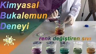 Kimyasal bukalemun deneyi