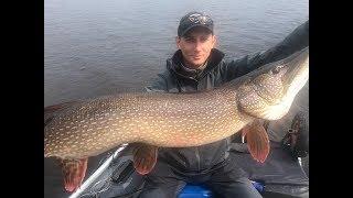 Рыбалка на щуку в сентябре сургут