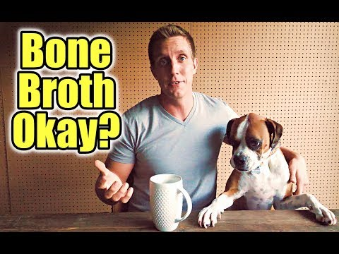 Is Bone Broth Good For Dogs?