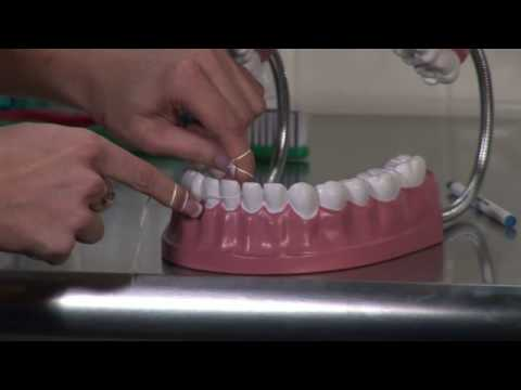 Dental Care & Oral Hygiene : How to Correctly Floss Your Teeth