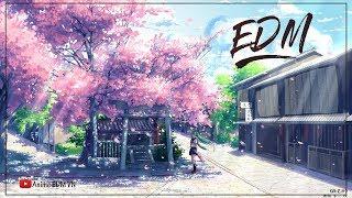 TOP 15 Bản EDM Thư Giãn, Giai Điệu Vui Tươi   Nhạc Điện Tử Gây Nghiện Hay Nhất 2018   Anime EDM VN