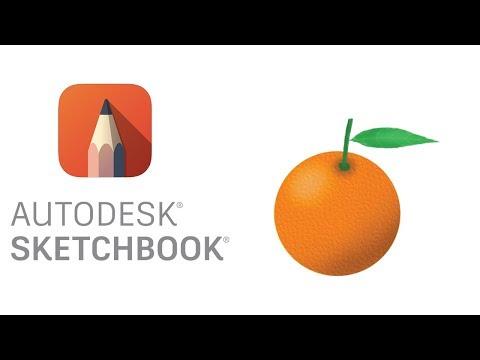 Download Autodesk Sketchbook Mobile Tutorials  Mp4  3gp - Borwap