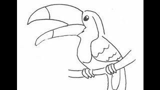 Смотреть онлайн Как нарисовать птицу тукана поэтапно карандашом