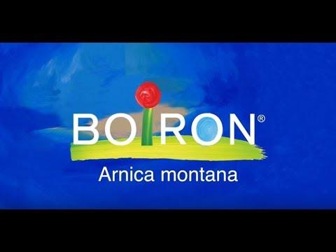 Boiron, Single Remedies, Arnica Montana, 30C, Approx 80 Pellets