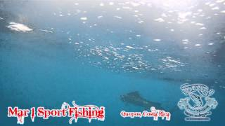 preview picture of video 'Mar 1 Sport Fishing Quepos, Costa Rica from January 17 2013 Part 2'
