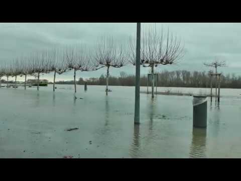 Rheinhochwasser Speyer 7.1.2018