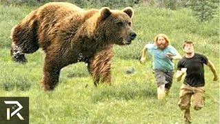 10 People Almost EATEN ALIVE By Animals