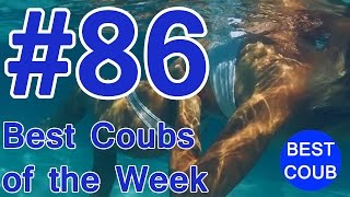 Best Coub of the Week | Лучшие Кубы Недели #86