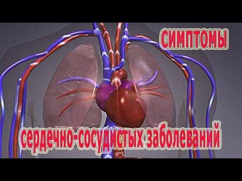 Helminth in un fegato
