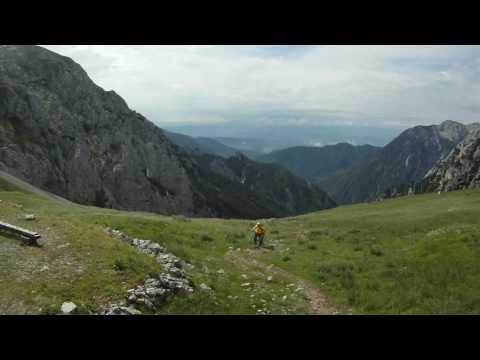 Dan Kamniških planin 2010