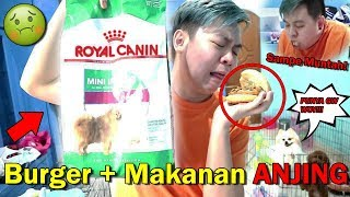 RAYAIN 1.250.000. MAKAN BURGER + DOGFOOD! *Muntah* Video thumbnail