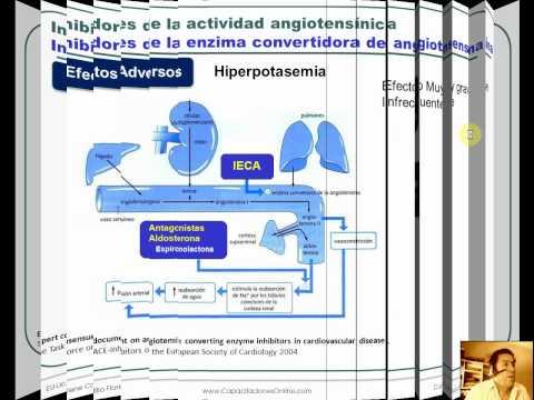 Hipertensión Alan L rubí para los maniquíes