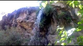 preview picture of video 'El saltón colorado - Departamento El Alto - dptoelalto.com.ar.mp4'