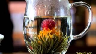 Смотреть онлайн Красивый чай: цветок раскрывается в чайнике с кипятком