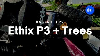 Ethix P3 Peanut Butter Jelly and Trees ???????? | FPV Freestyle (Fettec)