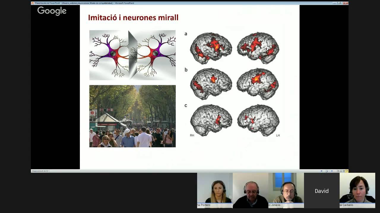 Seminari web: Com dissenyar pràctiques educatives basades en la neuroeducació?