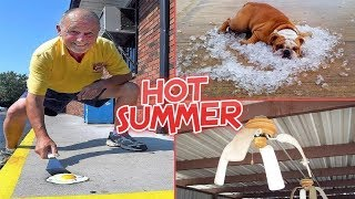 This Summer is Going to be Hot I Funny Pictures