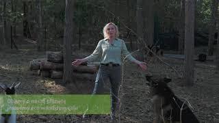 Film do artykułu: Jestem eco z ecostacją -...
