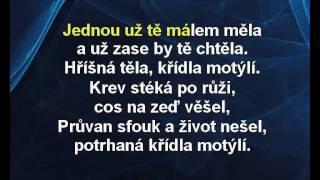 Aneta Langerová - Hříšná těla, křídla motýlí (karaoke z www.karaoke-zabava.cz)