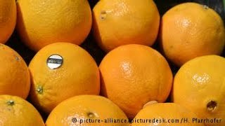 Designer italiana fabrica vestidos a partir da laranja
