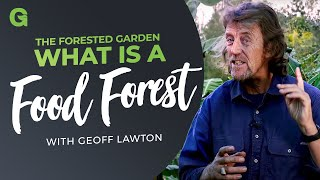 Best Explanation of Building Layers of a Food Forest by the best Geoff Lawton