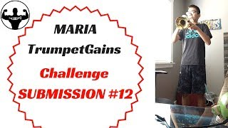 MARIA   TG Challenge Submission #12