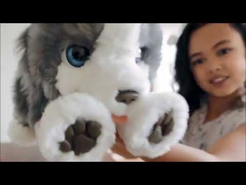 Furreal Friends Ricky|  Riley Diary Toy Review