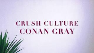 Conan Gray  Crush Culture Lyrics