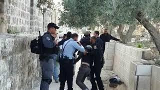 Video: Židé zatčeni na Chrámové hoře