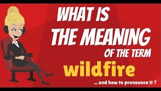 What is WILDFIRE? What does WILDFIRE mean? WILDFIRE meaning, definition & explanation