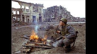 Чечня. Январь 1995.
