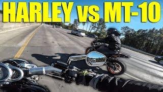 Harley V-Rod SMACKS DOWN Yamaha MT-10!!! (Walterific, Motonosity, & Jake)