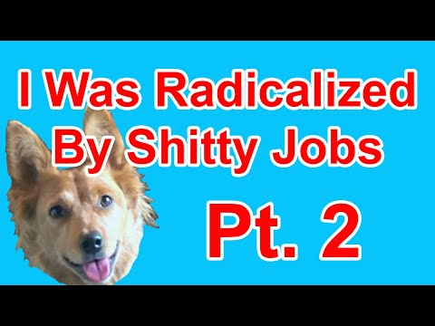 Radicalized by Work Experiences Pt. 2 - Radical Reviewer (ft. Kathrin)