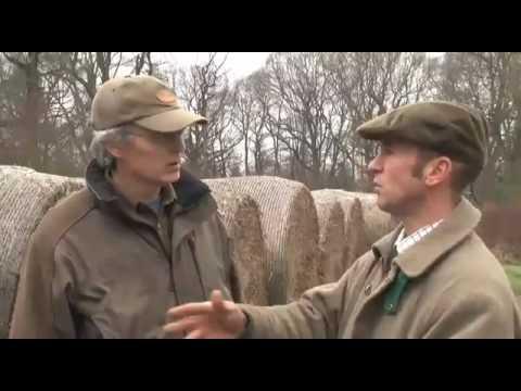 Fieldsports Britain Gundogs Special