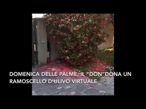 Un ramoscello d'ulivo (virtuale) per la Domenica delle Palme