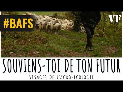 Souviens-toi de ton futur - Bande Annonce VF – 2019