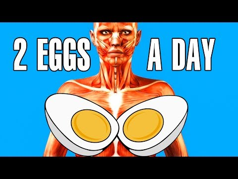 What Happens To Your Body When You Start Eating 2 Eggs Every Day